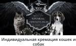 """Частный крематорий для домашних животных в Москве """"Кремень""""."""